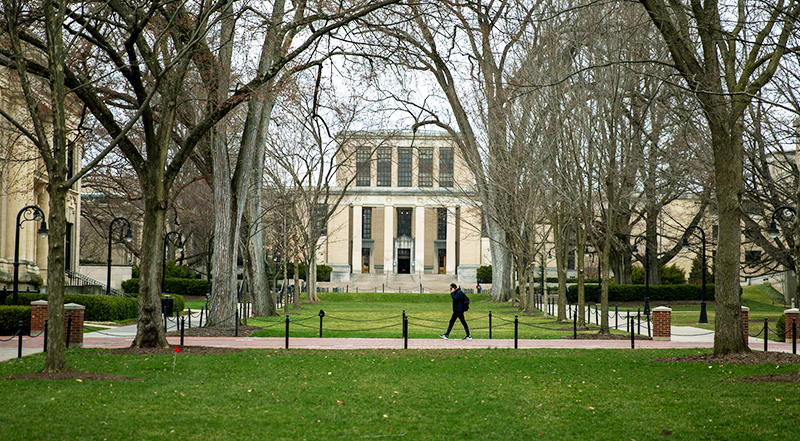 What Will Colleges Look Like in the Fall?